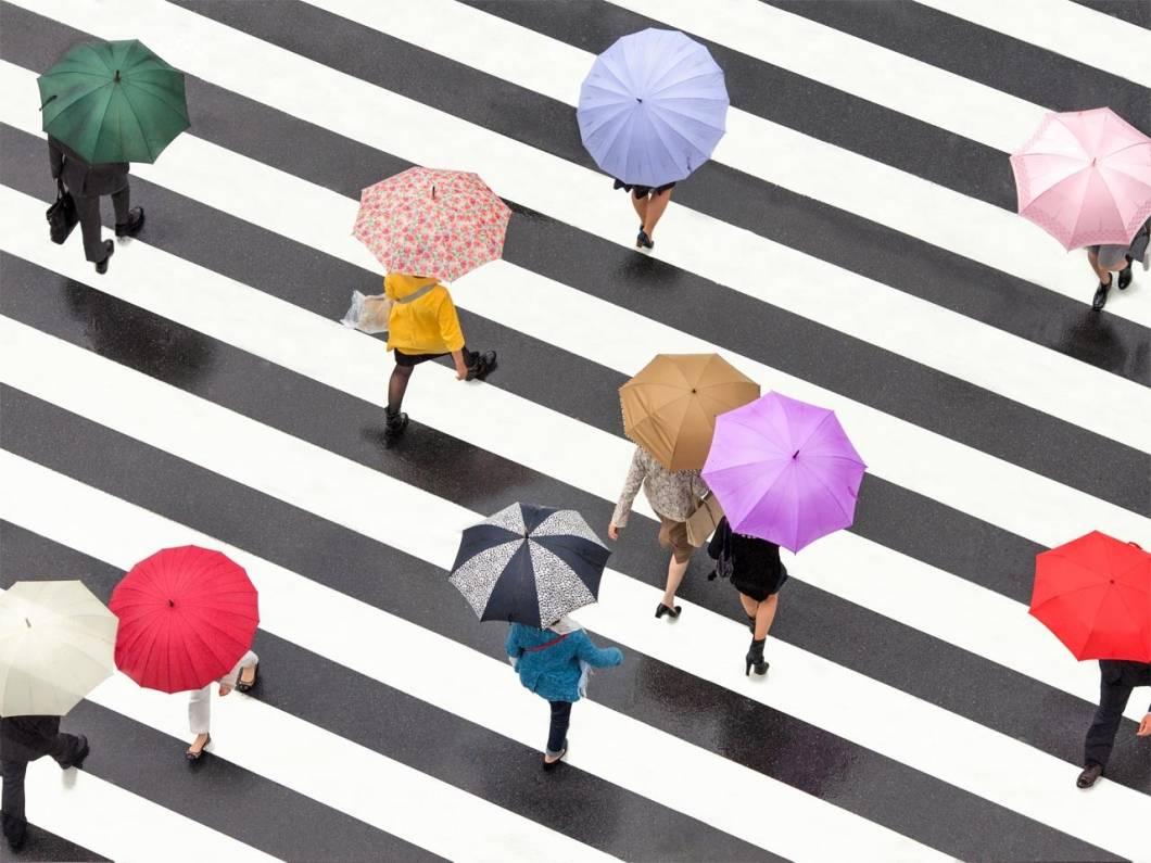 Gente estresada con paraguas pasando por un paso de cebra
