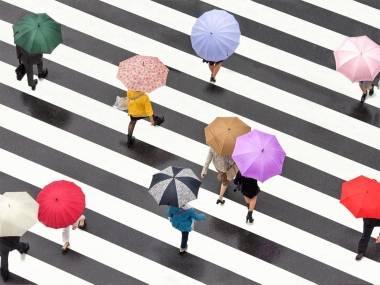 Gent estressada amb paraigües passant per un pas de zebra