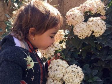 Niña oliendo flores en época de alergias