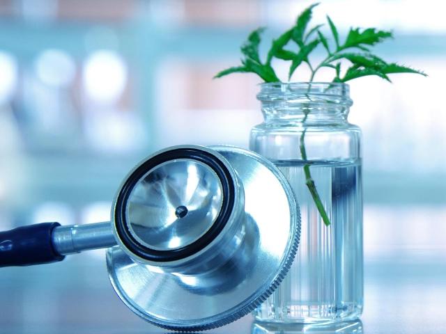 Medicina Biológica e Integrativa