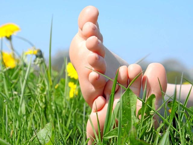 planta-pies-campo