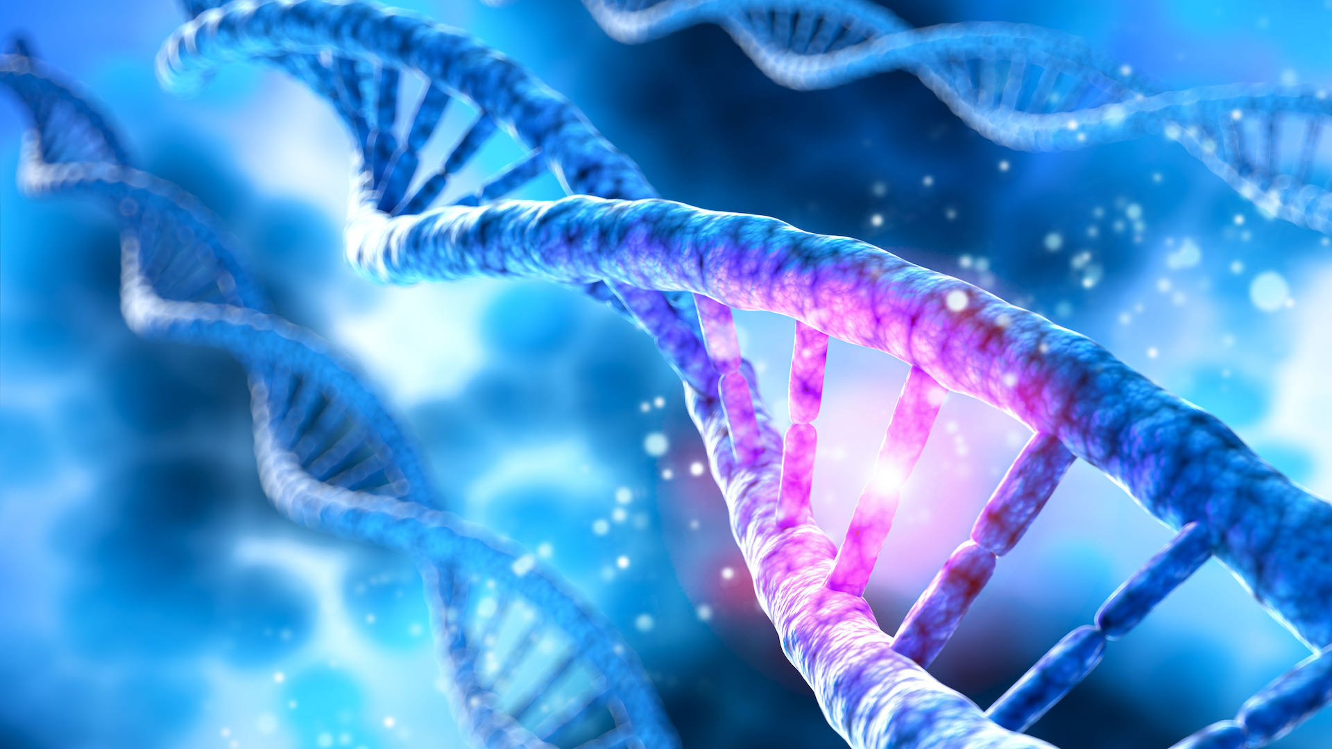 Diagnòstic Genètic Preimplantacional